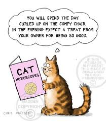 Cat horoscope